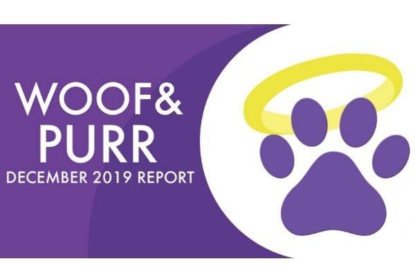 Woof & Purr Report December