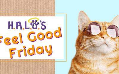 Feel Good Friday!