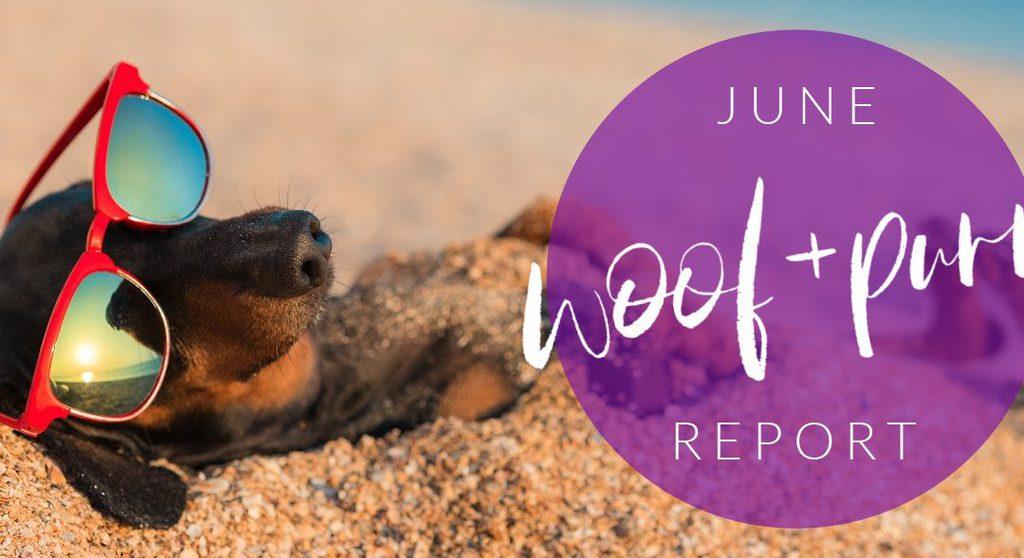 Woof & Purr Report June