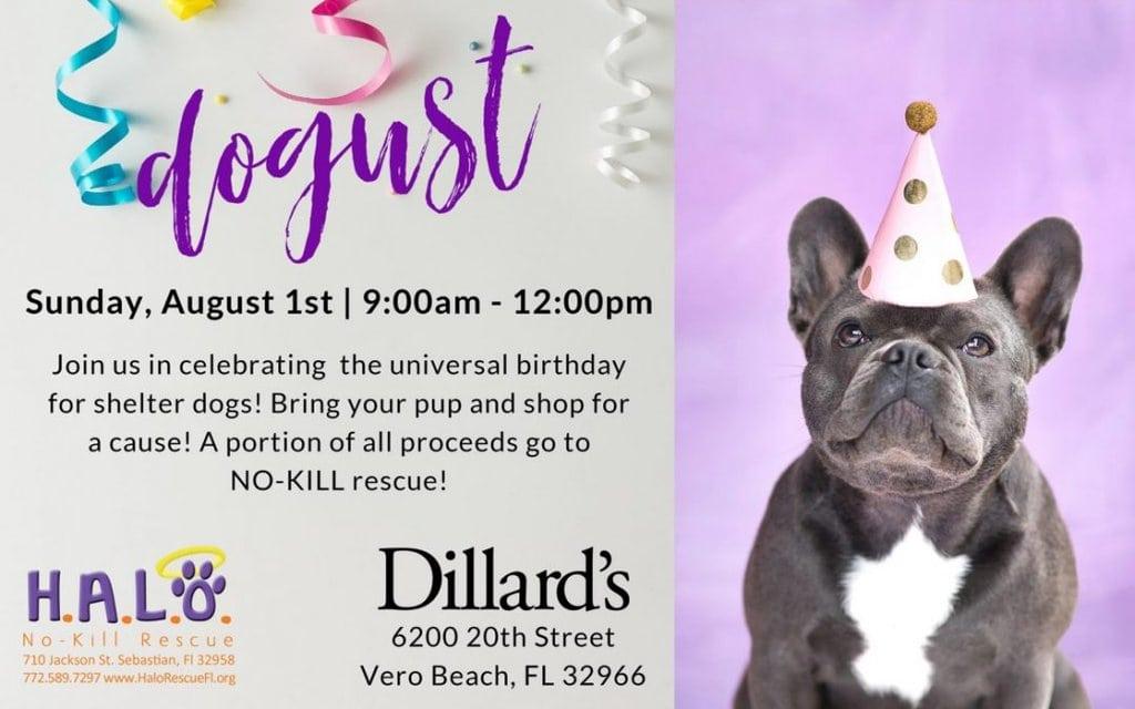 Dogust at Dillard's!