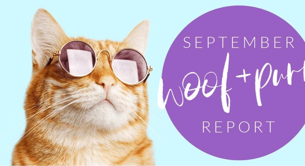 Woof & Purr Report September